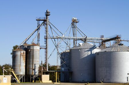 agriculture industrial: Grain storage silos with elevator equipment to move bulk crops to the containers  Stock Photo