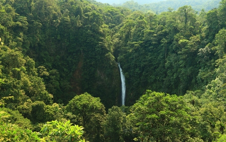 fortuna: La Fortuna waterfall, which drops 75 metres through the rainforest near Arenal, Costa Rica. Stock Photo
