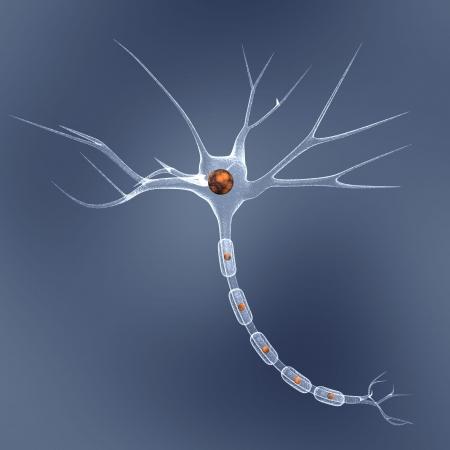 neuron cel in blauw