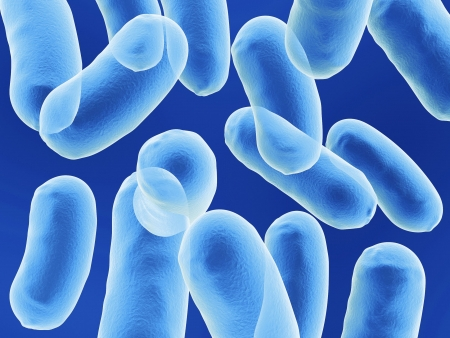 organisms: bacullus bacteria cells on blue background Stock Photo