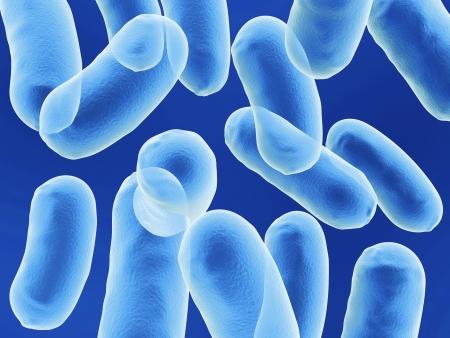 monella: bacullus c�lulas de las bacterias en fondo azul