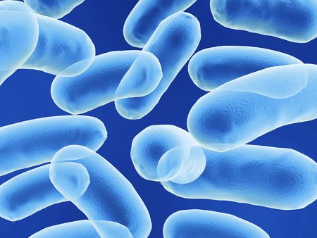 diarrhoea: bacullus bacteria cells on blue background Stock Photo