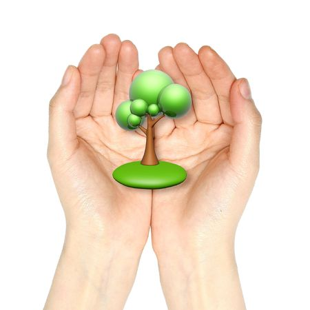 green cartoon tree in hand isolated on white background Stock Photo - 3377183