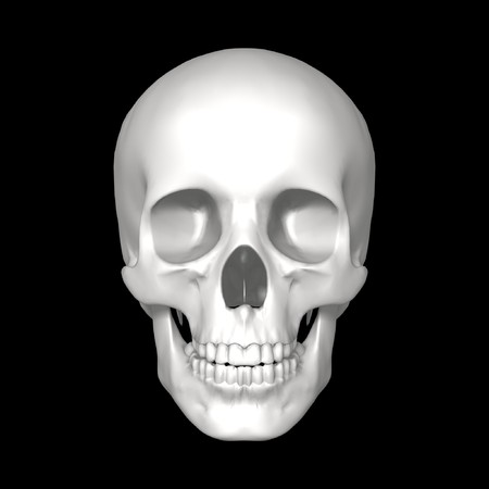 skeleton skull: white human skull isolated on dark background