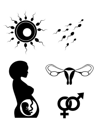reproduce symbols silhouette isolated on white background Stock Photo - 7548238