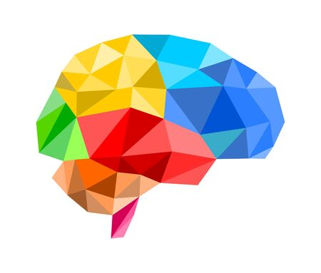intellect: 3d polygon brain illustration on white background