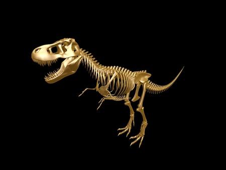 golden  tyrannosaurus Dinosaur skeleton isolated on dark background photo