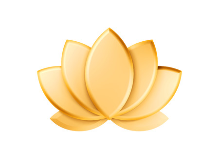golden lotus green leaves isolated on white background photo
