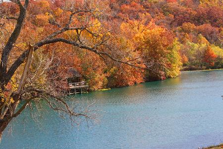 Fall season View in river Фото со стока