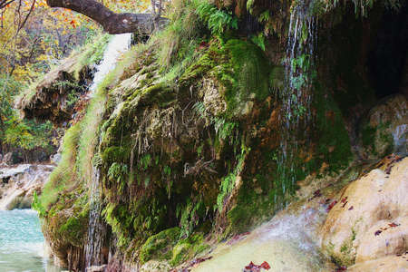 cascading: Waterfalls cascading gently over mossy rocks in fall.