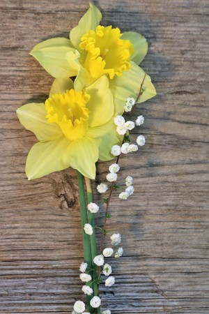Two yellow daffodils with a stem of tiny white wildflowers arranged on a weathered wood background. Stock Photo