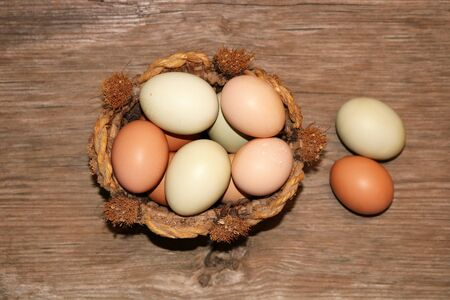 Top view of green and brown farm fresh eggs in a round basket, with two eggs on the side, on a wood grain background. Stock Photo