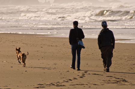 A young couple walking with their dog along the pacific coast Stock Photo - 4718815
