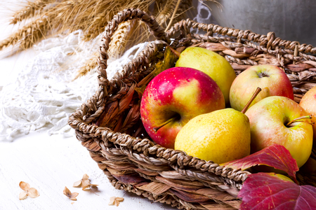 harvest of red apples in a basket and in autumn leaves Stock Photo