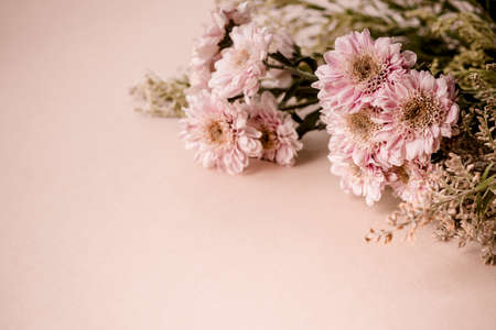 Beautiful bouquet of pink chrysanthemum flowers on pale beige background. Trending minimalist horizontal banner with copy space for text.