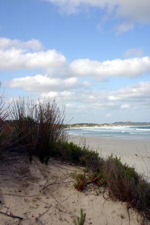 Beach, grasses and sky at Vivonne Bay, Kangaroo Island, South Australia