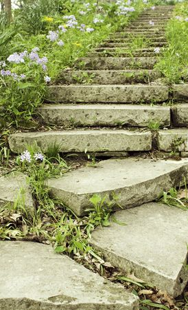 Stone stairway lined with flowering phlox on a shady garden path in  vertical orientation