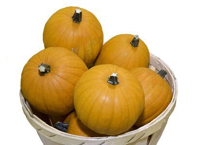 Small sugar pumpkins (Cucurbita maxima) in a basket isolated against white photo