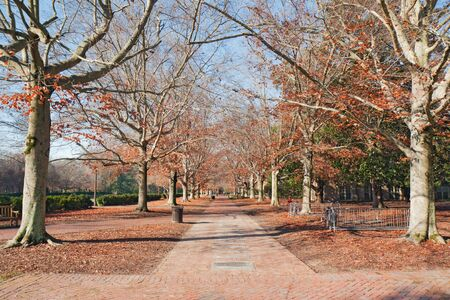 Brick walkway on the campus of the College of William and Mary in Virginia during autumn