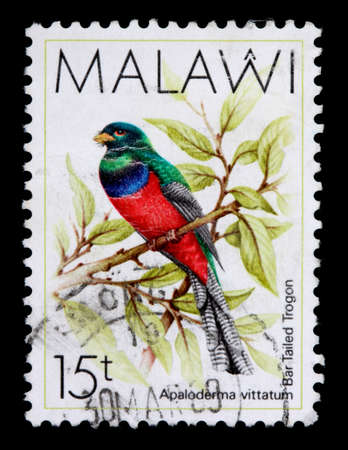 MALAWI - CIRCA 1987: An 15-tambala stamp printed in Malawi shows the bar tailed trogon, Apaloderma vittatum, circa 1987 Stock Photo - 9475657