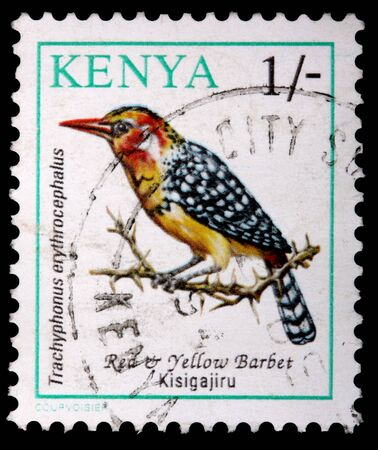 franked: KENYA - CIRCA 1993: A 1-schilling stamp printed in Kenya shows the red & yellow barbet bird, Trachyphonus erythrocephalus, and thorn bush, circa 1993