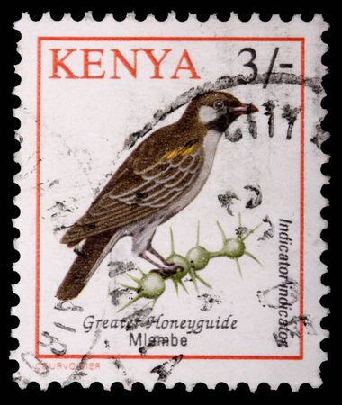 franked: KENYA - CIRCA 1993: A 3-schilling stamp printed in Kenya shows the greater honeyguide bird, Indicator indicator, and thorn bush, circa 1993