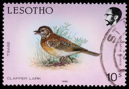 LESOTHO - CIRCA 1988: A 10-sente stamp printed in the Kingdom of Lesotho shows the clapper lark, Mirafra apiata, circa 1988