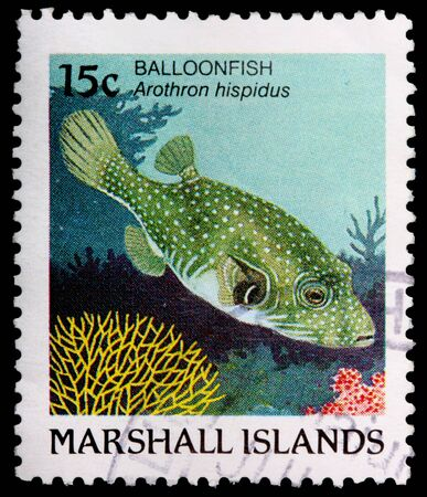 arothron: REPUBLIC OF THE MARSHALL ISLANDS - CIRCA 1988: A 15-cent stamp printed in the Republic of the Marshall Islands shows a balloon fish, Arothron hispidus, circa 1988