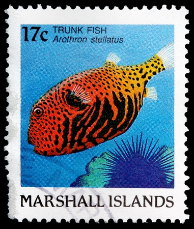 franked: REPUBLIC OF THE MARSHALL ISLANDS - CIRCA 1988: A 17-cent stamp printed in the Republic of the Marshall Islands shows a trunk fish, Arothron stellatus, circa 1988 Editorial