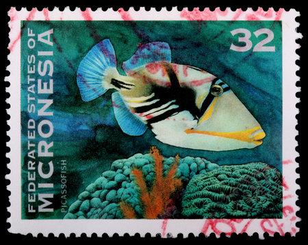 gatillo: DE MICRONESIA - alrededor de 1996: Un sello de 32 céntimos impreso en los Estados Federados de Micronesia muestra el ballesta Picasso, Rhinecanthus aculeatus y coral, alrededor del año 1996 Editorial