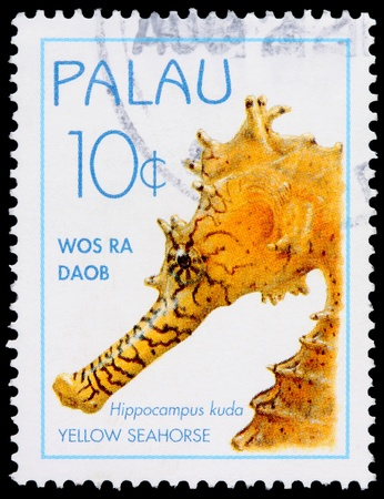 franked: PALAU - CIRCA 1995: A 10-cent stamp printed in the Republic of Palau shows the Yellow Seahorse, Hippocampus kuda, circa 1995