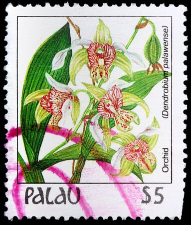 PALAU - CIRCA 1987: A 4-dollar stamp printed in the Republic of Palau shows leaves and flowers of the orchid plant, Dendrobium palawense, circa 1987