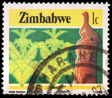 franked: ZIMBABWE - CIRCA 1985: A 1-cent stamp printed in the Republic of Zimbabwe shows tobacco, circa 1985 Editorial