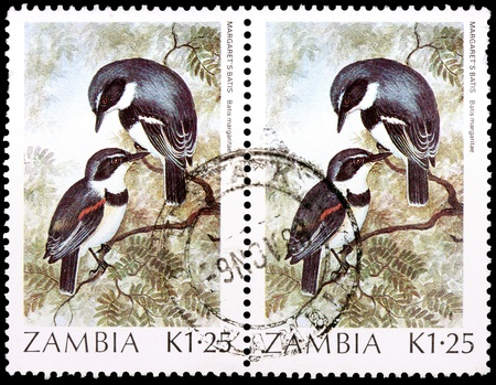 ZAMBIA - CIRCA 1987: Two 1.25-kwacha stamps printed in the Republic of Zambia shows male and female birds of Margarets batis, Batis margaritae, circa 1987