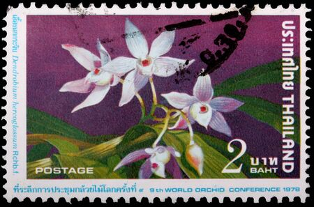 THAILAND - CIRCA 1978: A 2-baht stamp printed in the Kingdom of Thailand shows plants and flowers of the orchid, Dendrobium hercoglossum, to commemorate the 9th World Orchid Conference, circa 1978