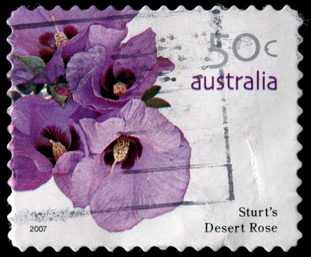 AUSTRALIA - CIRCA 2007: A 50-cent stamp printed in the Commonwealth of Australia shows flowers and leaves of Sturt Stock Photo - 12513599