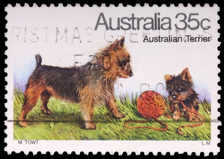 AUSTRALIA - CIRCA 1980: A 35-cent stamp printed in the Commonwealth of Australia shows an adult and puppy of the Australian terrier dog playing with a ball of yarn, circa 1980