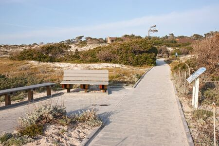 ASILOMAR, CALIFORNIA - MARCH 17: Walkway, dunes and buildings at Asilomar State Park and Conference Grounds on March 17, 2011. A U.S. biosecurity panel may call for an Asilomar-style moratorium on publications relating to the H5N1 bird flu. This refers to