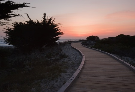 A walkway over sand dunes photo