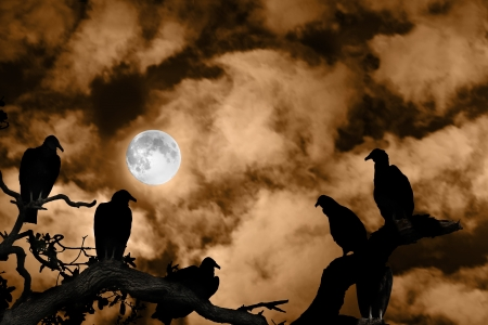 ghostly: Several vultures are viewed as silhouettes by a rising full moon against a spooky orange sky and clouds Stock Photo
