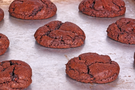 Home-made dark chocolate cookies fresh out of the oven cool down while still on the pan photo
