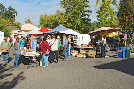 market vendor: Buyers and vendors at the Saturday morning Calistoga Farmers Market  Historic Calistoga is a popular tourist stop at the north end of Napa Valley wine country