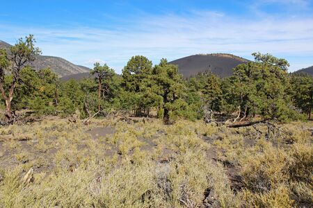 Slope of the cinder cone at Sunset Crater Volcano National Monument north of Flagstaff, Arizona