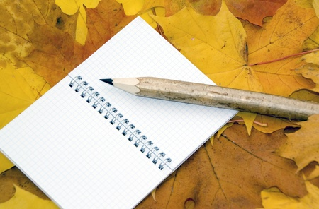 Autumn leaves, notebook and pen Stock Photo