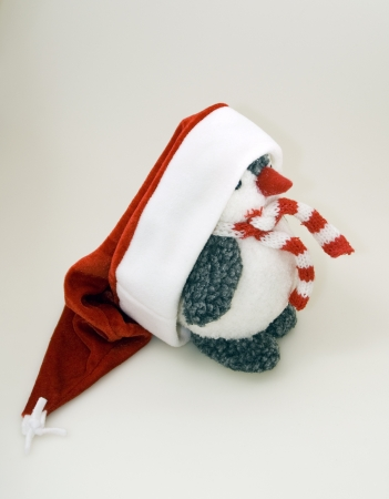 Penguin in winter cap and scarf