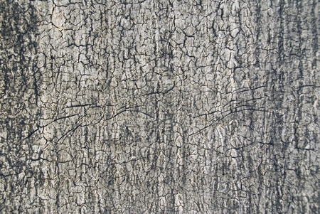 La textura de Ruberoid en el techo