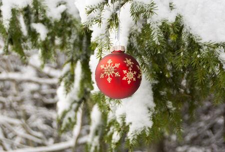 Bola roja de Navidad en el bosque de invierno