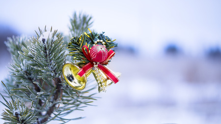Christmas decoration on natural fir photo