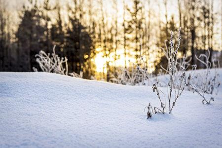 La puesta del sol de la tarde en invierno