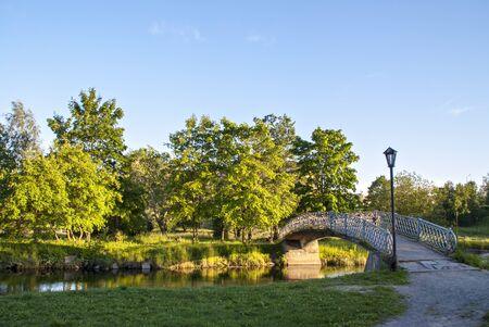 foot bridge: Foot bridge through river in city park